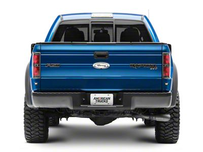 Defenderworx F 150 Tailgate Emblem With Raptor Logo Polished 901107 10 14 F 150 Raptor