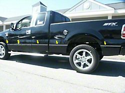 Body Side Molding Accent Trim; Stainless Steel (04-14 F-150 SuperCab w/ 6-1/2-Foot Bed)