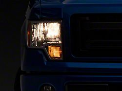 Axial OEM Style Replacement Headlights; Chrome Housing; Clear Lens (09-14 F-150 w/o Factory HID Headlights)