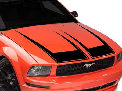 American Muscle Graphics Pinstriped Hood Decal - Black (05-09 GT, V6)