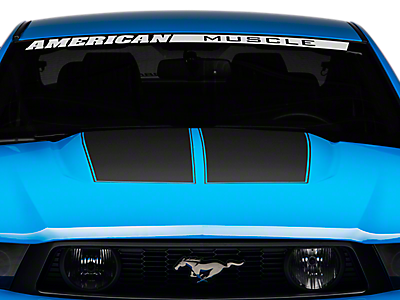 Hood Decals & Hood Scoop Decals<br />('10-'14 Mustang)