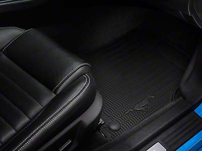 Floor Mats & Carpet<br />('10-'14 Mustang)