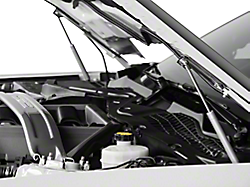 Hood Struts<br />('15-'21 Mustang)