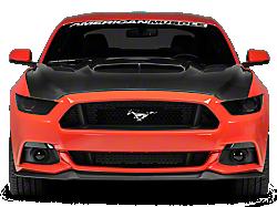 Hoods<br />('15-'21 Mustang)