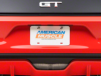 License Plates & License Plate Frames<br />('15-'17 Mustang)