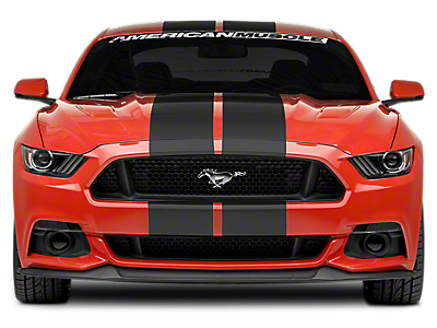 Racing Stripes<br />('15-'19 Mustang)