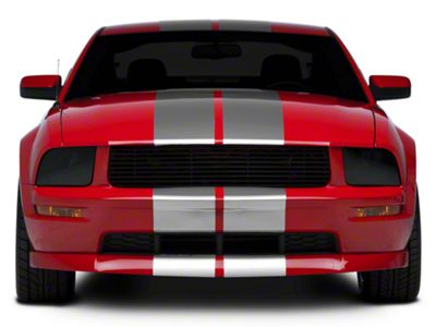 American Muscle Graphics Silver GT500 Style Stripes - 10 in. (05-14 All)