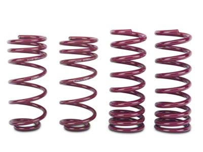 Vogtland Sport Lowering Springs (79-93 V8 Coupe, Hatchback)