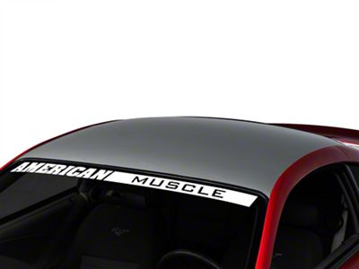 American Muscle Graphics Silver Solid Roof Decal (94-04 All)
