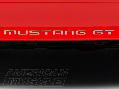 American Muscle Graphics Silver Vinyl Bumper Insert Letters (87-93 GT, LX)