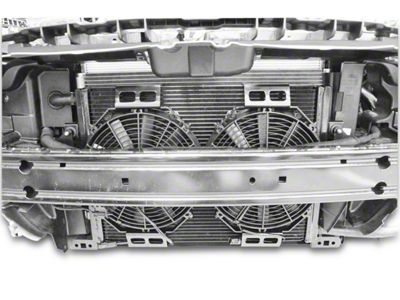 Whipple Dual 11 in. Fans for Whipple Heat Exchanger (15-17 GT)