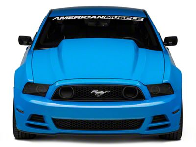 Cervini's 4 in. Cowl Induction Hood - Unpainted (13-14 GT, V6; 10-14 GT500)