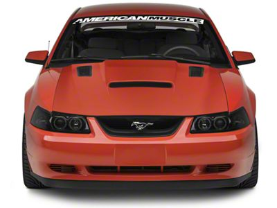 Cervini's Stalker 2 Hood - Unpainted (99-04 All)