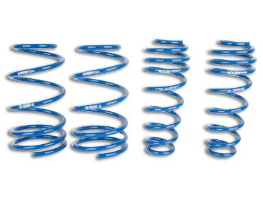 Roush Lowering Springs (05-14 GT, V6)