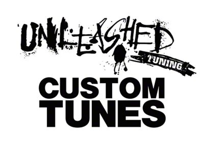 Unleashed Tuning Custom Tunes (10-12 GT500)