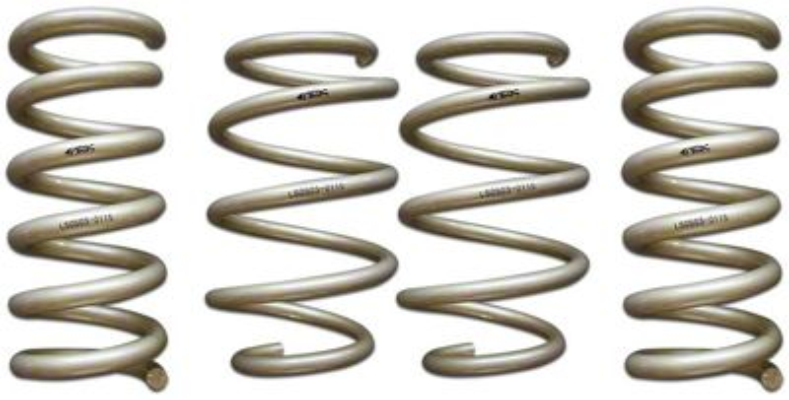 Ark Performance GT-S Lowering Springs (15-19 GT, EcoBoost, V6 w/o MagneRide)