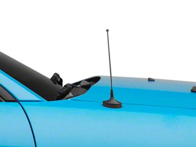 SpeedForm Fixed Black Antenna - 8 in. (79-09 All)