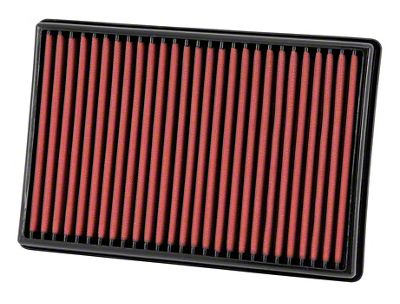 AEM DryFlow Replacement Air Filter (02-19 RAM 1500)