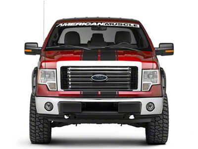Matte Black Full Length Stripes - 10-1/4 in. (09-14 F-150)