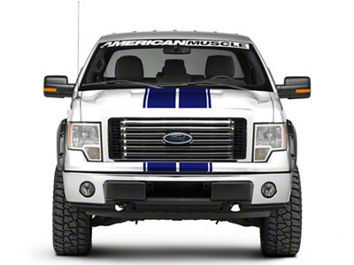 Blue Full Length Stripes - 10-1/4 in. (09-14 F-150)