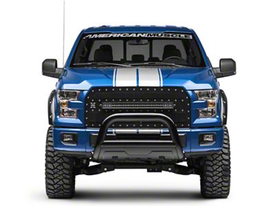Silver Full Length Stripes - 10-1/4 in. (15-18 F-150)