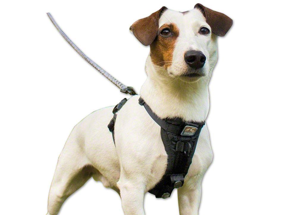 Kurgo TruFit Smart Dog Walking Harness - Black