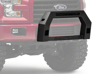 Bull Bar w/ LED Light Openings - Black (09-19 F-150, Excluding Raptor)