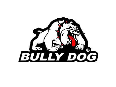 F150 Bully Dog Parts