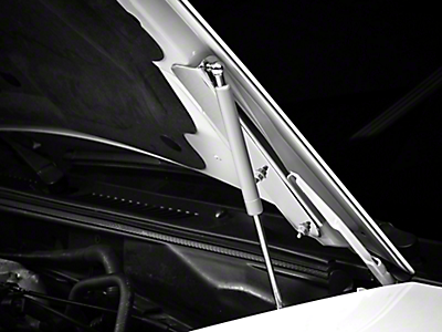 Hood Struts<br />('99-'04 Mustang)