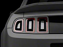 Light Trim & Bezels<br />('10-'14 Mustang)